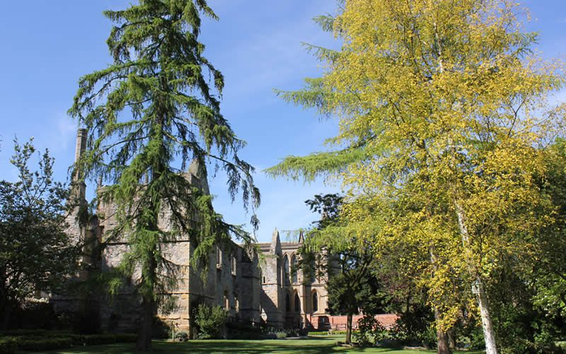 Southwell Minster Gardens and Grounds. Would you like to volunteer?